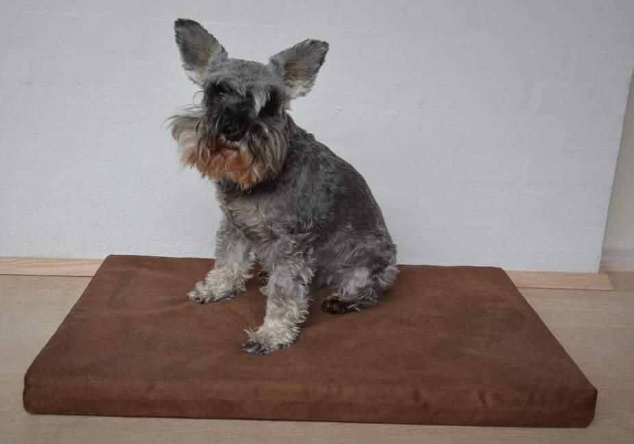 Image of   DogPad - Luksus Liggepude til Hunde med Særlige Behov